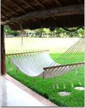 Medium image of american hammock